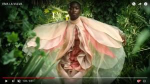 Eina per una comunicació no sexista (Observatori de les Dones en els mitjans de comunicació): Viva la vulva 11